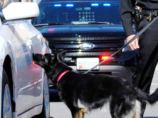 police k9 drug dog training
