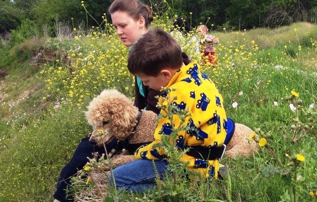 Puzzle Autism Service Dog