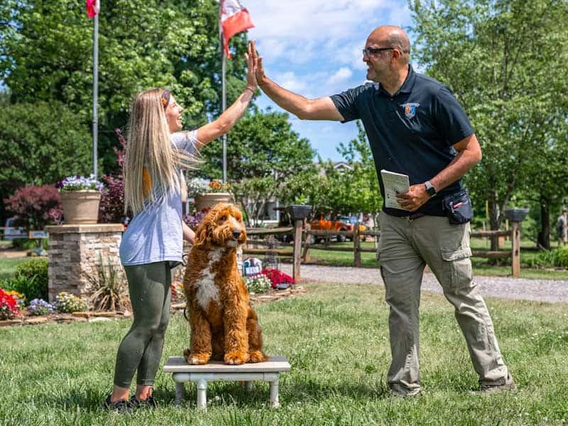 dog trainer school graduates