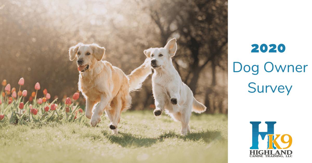 2020 highland canine dog owner survey